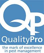 QP-v2